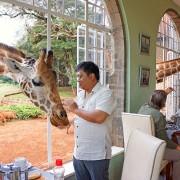 Комплекс Жирафа, Кенија