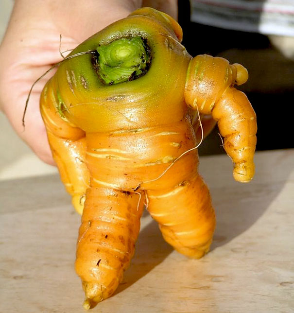 15 смешни овошки и зеленчуци кои мислат дека се луѓе