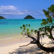 """""""Lanikai Beach"""", Каилуа, Хаваи"""