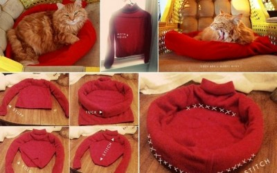 Направете сами: удобен кревет за вашето милениче