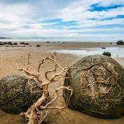 Камењата Мореаки (јајцата на змејови) на плажата Коекохи во Нов Зеланд (1)