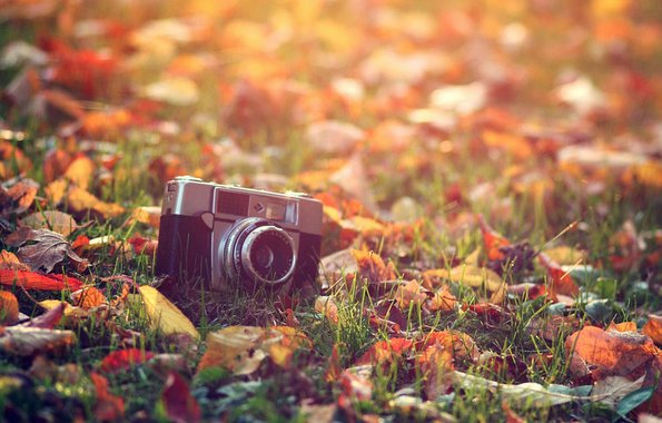 7 причини зошто есента е најдобро време за промени