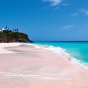 Плажата со розов песок на Бахамите (1)