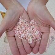 Плажата со розов песок на Бахамите (2)