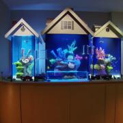 Декоративен аквариум (1)