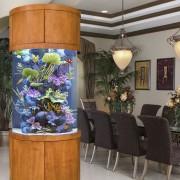Декоративен аквариум (2)