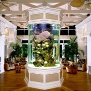 Декоративен аквариум (3)