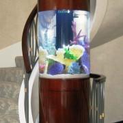 Декоративен аквариум (4)