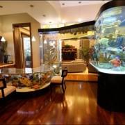 Декоративен аквариум (5)
