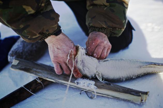 Рибарењето обезбедува извор на свежа храна за жителите на Ојмјакон.