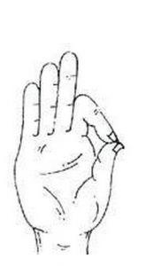 (1) Дланките и нивната моќ на исцелување