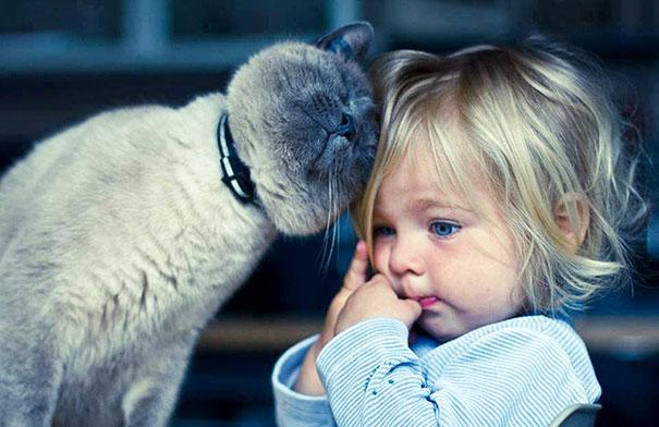 (1) Неодоливи фотографии кои покажуваат дека на вашите деца им е потребна мачка