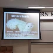 Професор по физика објаснува што е течност и зошто мачките се течност