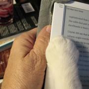 Читањето е позабавно со пријател.
