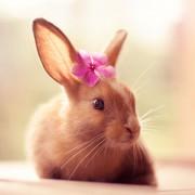 Изгледам прекрасно?