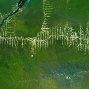 18. Сечење на Амазонските шуми – Бразил
