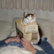 Не ми се верува што читам! Овој Толкен ептен бил добар!