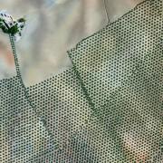 9. Плантажи со маслинови дрвја – Кордоба, Шпанија