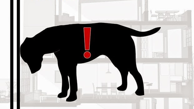Доколку вашето домашно милениче го прави ова, веднаш однесете го на ветеринар!