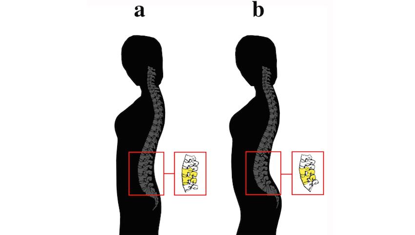 Зошто мажите преферираат одредена градба на тело кај жените?