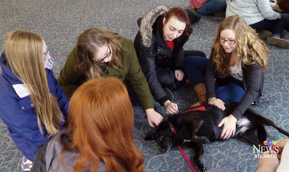 (4) Универзитет создал просторија со кутриња која им помага на студентите да се опуштат