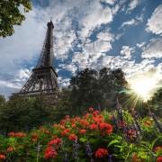Летен ден во Париз, Франција
