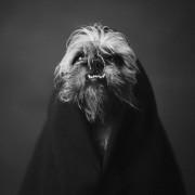"""Животински портрети кои покажуваат силни """"човечки"""" емоции"""
