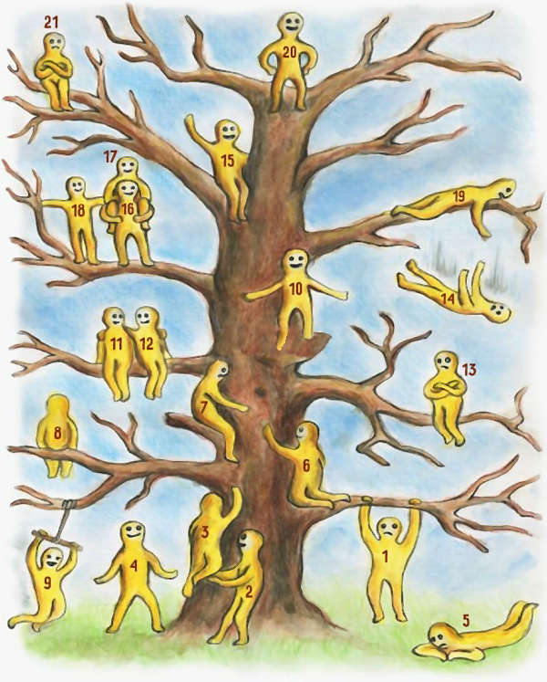 1-kade-se-naogjate-vie-na-ova-drvo-ednostaven-psiholoshki-test-www.kafepauza.mk_-2