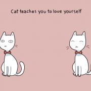 Мачката ве учи да се сакате себеси