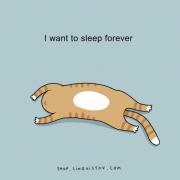 Сакам да спијам засекогаш