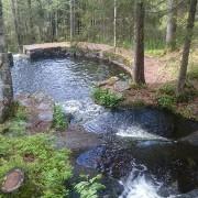 Природен базен за пливање во шума