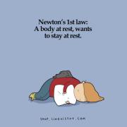 Прв Њутнов закон: Телото во мирување сака да остане во мирување.