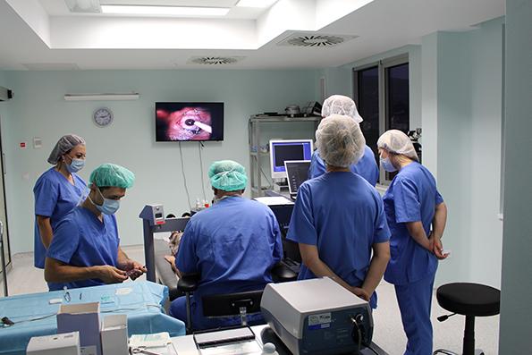 2-svedoshtvo-na-tv-prezenterkata-tatjana-stojanovska-koja-neodamna-napravi-operacija-za-otstranuvanje-na-dioptrija-vo-sistina-oftalmologija-kafepauza.mk