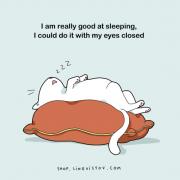 Навистина ме бива за спиење, можам да го правам тоа со затворени очи