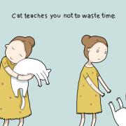 Мачката ве учи да не губите време