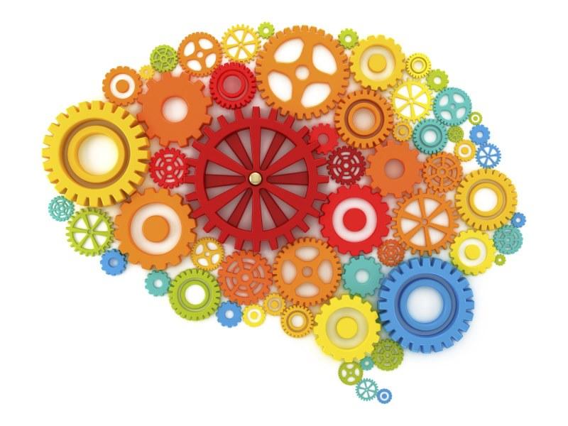 Зошто луѓето стануваат сè поинтелигентни? И повисоки?