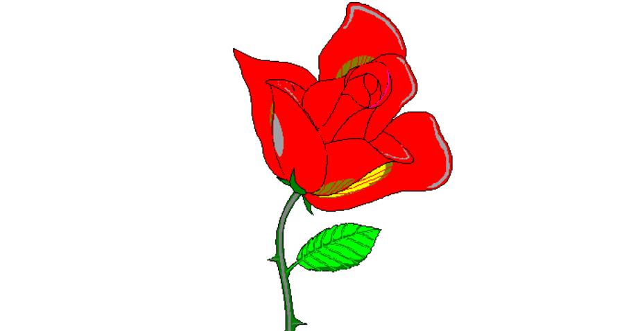 1-petals-around-the-rose-играта-во-форма-на-загатка-која-го-www.kafepauza.mk_