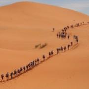 Вклучете се во Мароканскиот Маратон де Сабл (најтешкото пешачење на светот) низ пустината Сахара