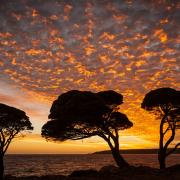 Зајдисонце на Банкер Беј, Западна Австралија