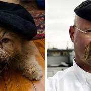 """Мачка и Џејми од """"MythBusters"""""""