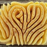Саке мед