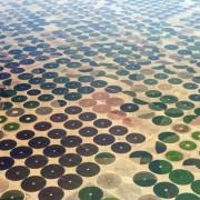 Фармерски полиња во Саудиска Арабија