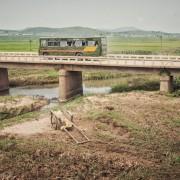 Државјаните на Северна Кореја можат да патуваат само низ државата, и тоа кога ќе добијат дозвола за тоа