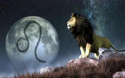 Дознајте како да го заведете лавот