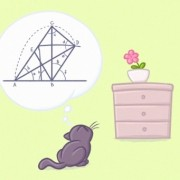 Научниците докажаа дека мачките ги разбираат основите на физиката