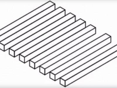 Оптичка илузија која ги збуни дури и оние со око соколово