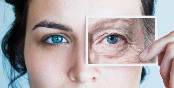 (2) Кои се разликите и сличностите во стареењето кај мажите и жените?