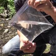 Знаете ли како да запалите оган со пластична кеса и вода?