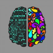 (0) Разлика помеѓу луѓето кај кои доминира левата и оние кај кои доминира десната страна на мозокот