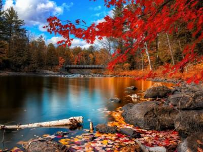 Симболични значења на есента кои ја докажуваат неверојатната убавина на ова годишно време